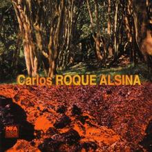 Carlos Roque Alsina Hinterland